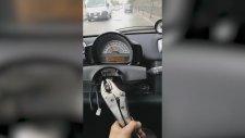 Direksiyonsuz Araba Kullanan Trafik Canavarı