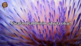 İlk Vahiy! Alak Suresi - Nasser al Qatami | fussilet Kuran Merkezi