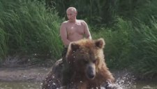 Putin'in Dev Gibi Ayıya Binmesi