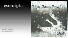 Pitch Black Process - Beautiful Delusion - Esen Digital