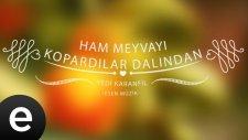 Yedi Karanfil - Ham Meyvayı Kopardılar Dalından