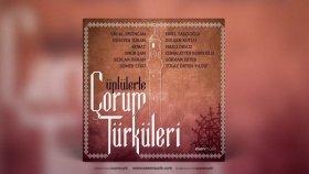 Erdal Erzincan - Bağdat Ellerinden Gelen Turnalar