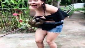 Turist Kızın Üzerine Atlayan Arsız Maymun