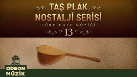 Çeşitli Sanatçılar - Taş Plak Nostalji Serisi, Vol. 13 (Türk Halk Müziği)