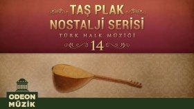 Çeşitli Sanatçılar - Taş Plak Nostalji Serisi, Vol. 14 (Türk Halk Müziği)
