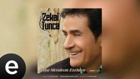 Zekai Tunca - Bilsem - Official Audio - Esen Müzik