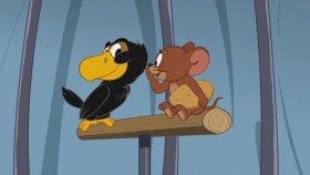 Tom Ve Jerry - Tom'un Görevi