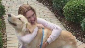2 Hafta Göremediği Dostuna Kavuşan Köpeğin Sevinci