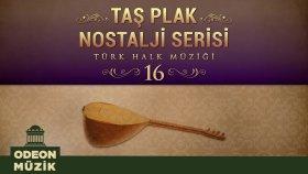 Çeşitli Sanatçılar - Taş Plak Nostalji Serisi, Vol. 16 (Türk Halk Müziği)
