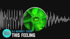 DJ Mehmet Tekin  - This Feeling