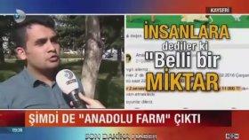 Çiftlik Bank'ın Ardından Anadolu Farm Vurgunu