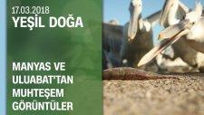 Manyas ve Uluabat Kuş Cenneti'nden Muhteşem Manzaralar - Yeşil Doğa 17.03.2018 Cumartesi