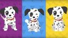 BENEK - Bir Çocuğun Köpeği Varmış - Yeni Çocuk Şarkısı