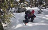 Kar Altına Saklanan Orman Tavuğu