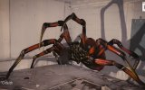 3D Örümcek Graffiti