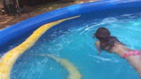 Piton Yılanıyla Havuzda Yüzen Küçük Kız