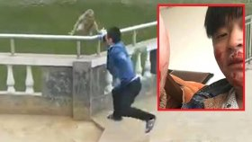 Maymunu Suya İten Turist Hayatının Dersini Aldı