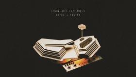 Arctic Monkeys - Golden Trunks