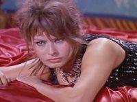 Sophia Loren - Americano