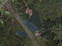 Kitap Almak için  Ağaca Tırmanıp Mahsur Kalan Genç