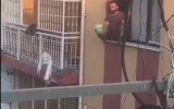Pencereden Sarkıp Top Sektiren Genç