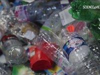 Altın Değerindeki Çöp - Plastik