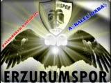Erzurum Dağlarında Ceylan Gezer