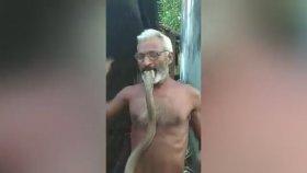 Kobrayı Isıran Adamı Kobranın Isırması