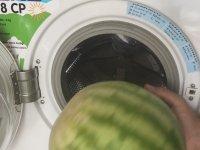 Çamaşır Makinesinde Karpuz Yıkamak
