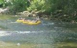 Nehirde Gezici Kadınları Korkutan Timsah