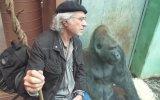 Gorille Dertleşmek