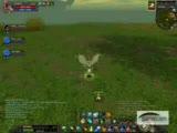 Silkroad Tg Killed _anger_  Server Oasis