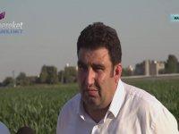 Mardinli Çiftçinin Kaçak Elektrik İsyanı