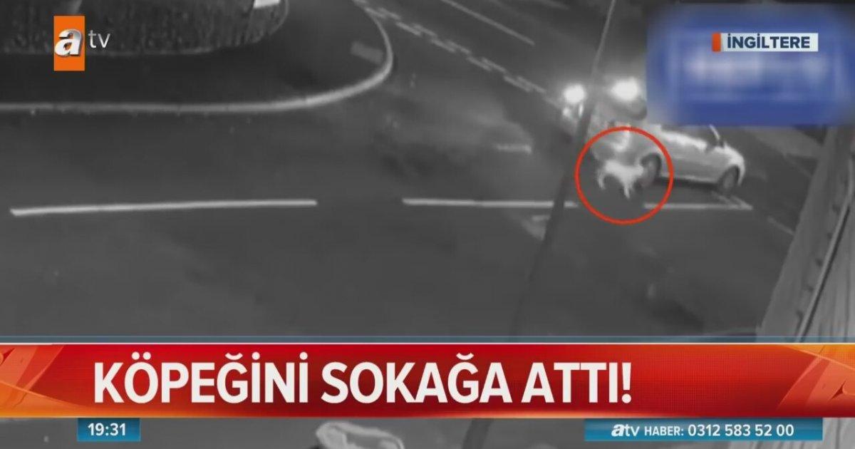 Köpeğini Sokak Ortasında Bırakıp Kaçan Vicdansız