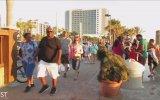 Çalı Olup Plajdaki İnsanları Trollemek