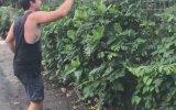 Hırsız Maymunu Ali Cengiz Oyunuyla Kandıran Adam