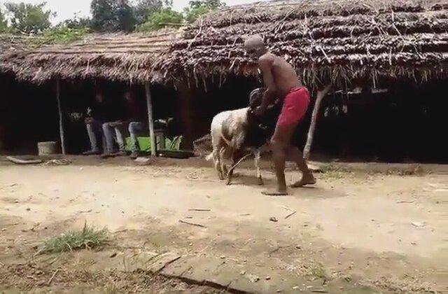 Kendini Koça Toslatan Amca