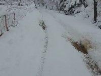 Tofaş'la Kar Küremek