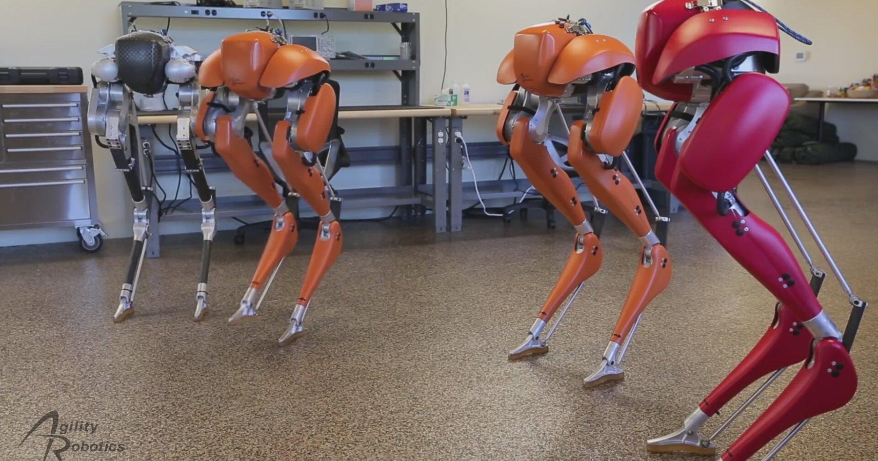 Müthiş Bir Dengeye Sahip Olan Robotlar