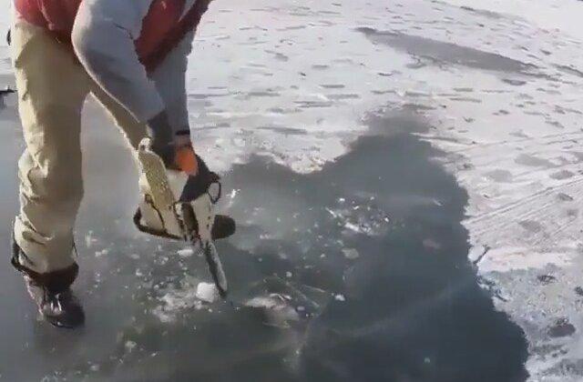 Balık Yerken Donan Balık