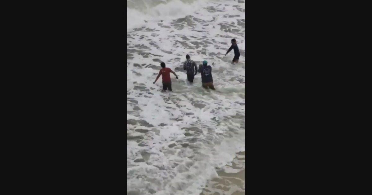 Kıyıya Vuran Köpek Balığını Kurtaran İnsanlar