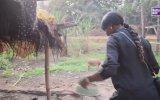 Medusa Topuz Saçlı Ablanız ile Uzakta Bir Köy 3