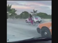 Otoyolda Bisikleti Ters Oturup Kullanan Çılgın