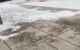 Buz Tutan Havuzda Çanağı Kıran Eleman