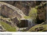 Bostan Saz Grubu (Halebi)