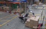 Kutu Taşıyan ve Dizen Robot  Boston Dynamics