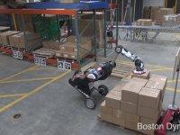 Kutu Taşıyan ve Dizen Robot - Boston Dynamics