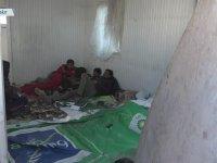 Afganistan'dan Gelen Sığınmacılar