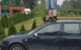 Kıçıyla Arabanın Camını Kıran Dangoz