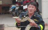 Piton Yılanı Saldırısından Nasıl Kurtulunur